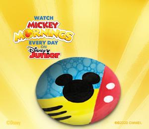 Tampa Mickey's Soap Dish