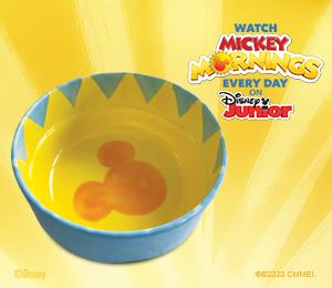 Tampa Mickey's Sunshine Bowl